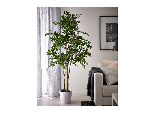 Alquiler de plantas artificiales decorativas - Plantas artificiales para interiores ...
