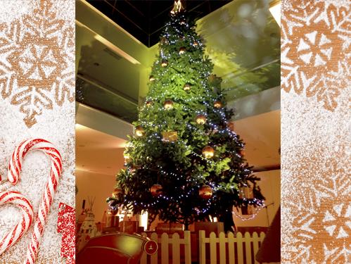 Alquiler de rboles de navidad gigantes - Arboles de navidad precios ...