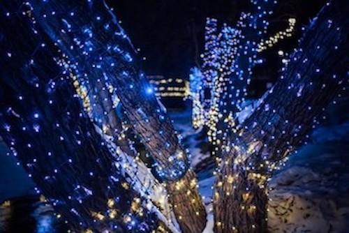 Cadenas De Luces Led De Color Azul Y Cable Azul 12 Metros