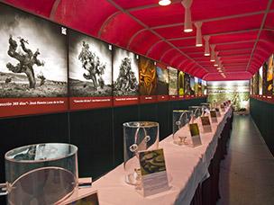 Túnel de Olores para vinos de Castilla