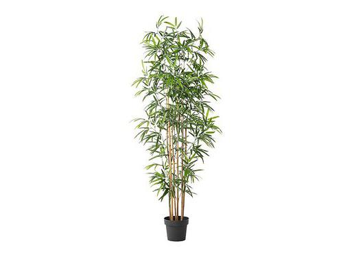Alquiler de plantas artificiales de bambú